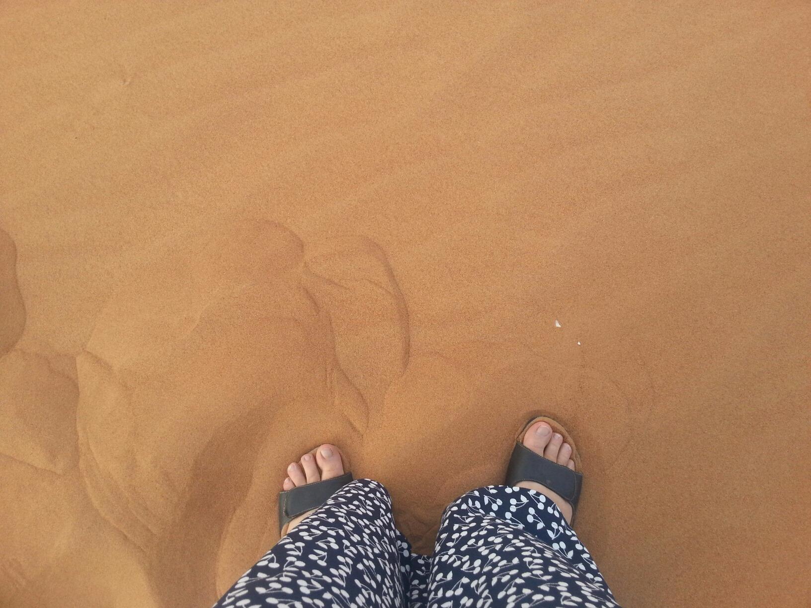 Sand dune Safari