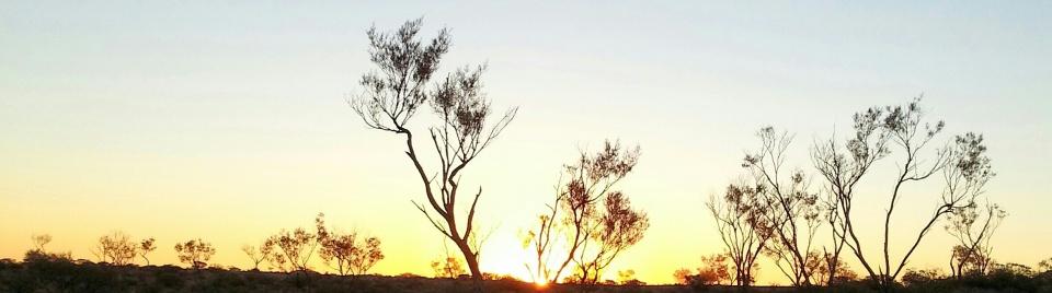 NT Sunrise